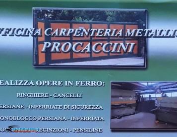 Officina Procaccini Flavio